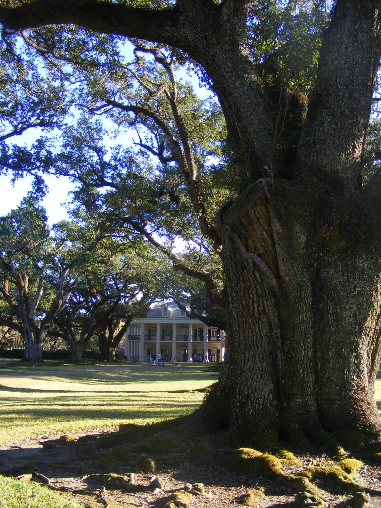 La plantation de Oak Alley.