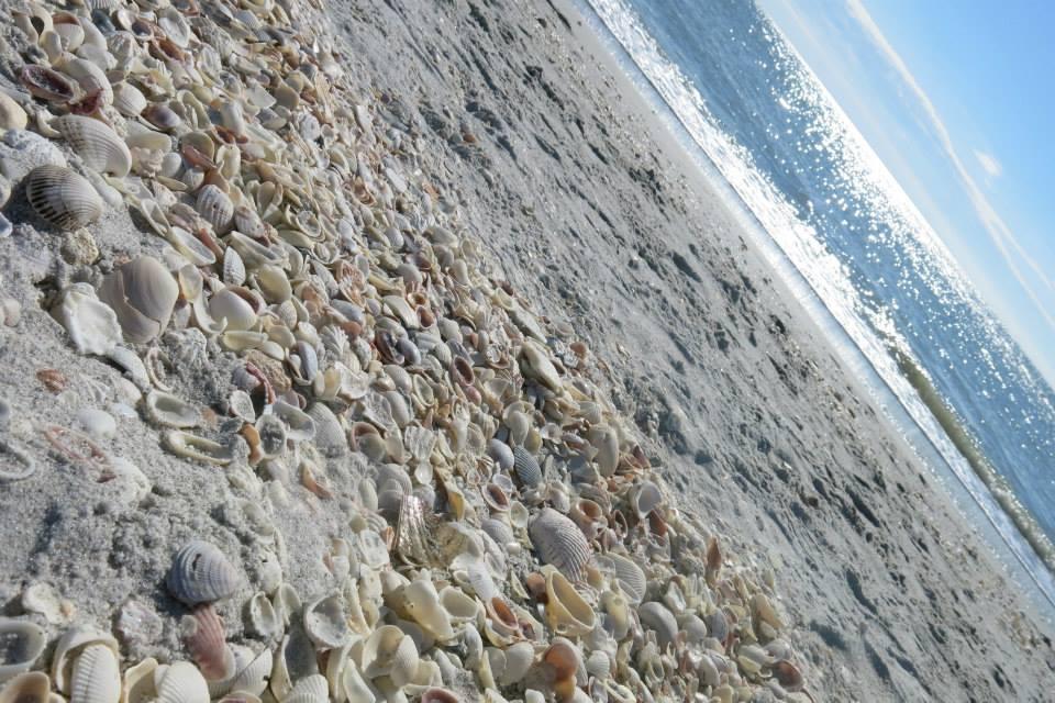 bowmans-beach-larevuey