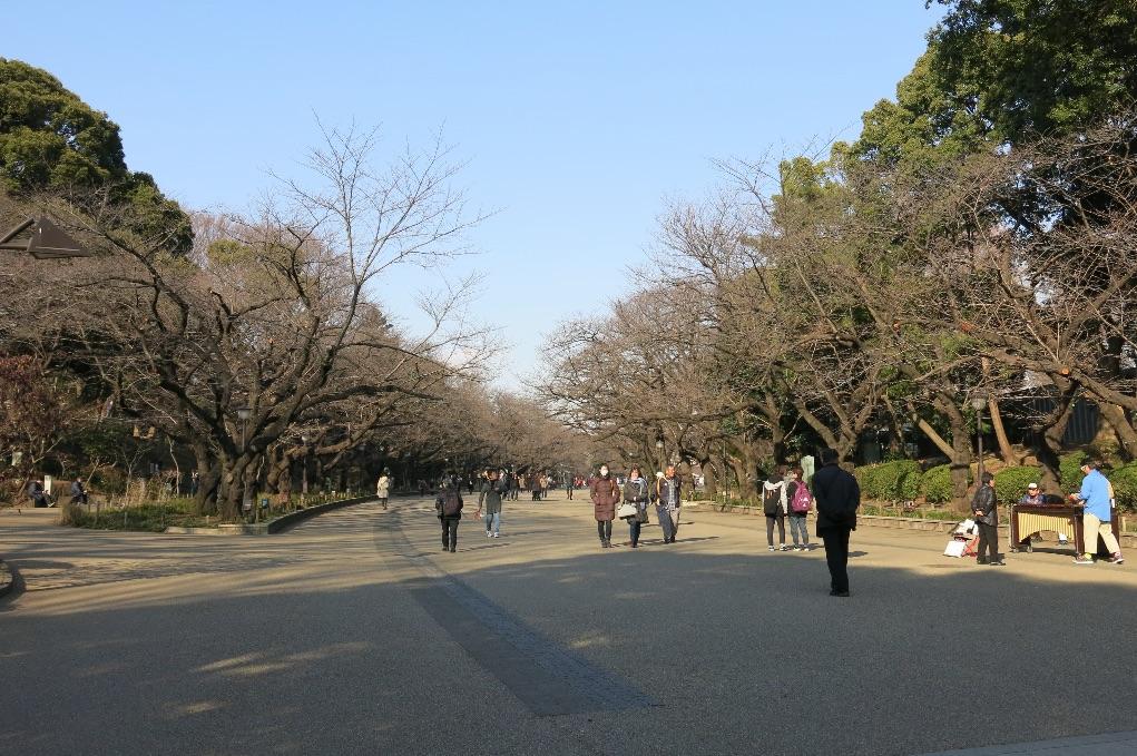 tokyo-Ueno-larevuey-3