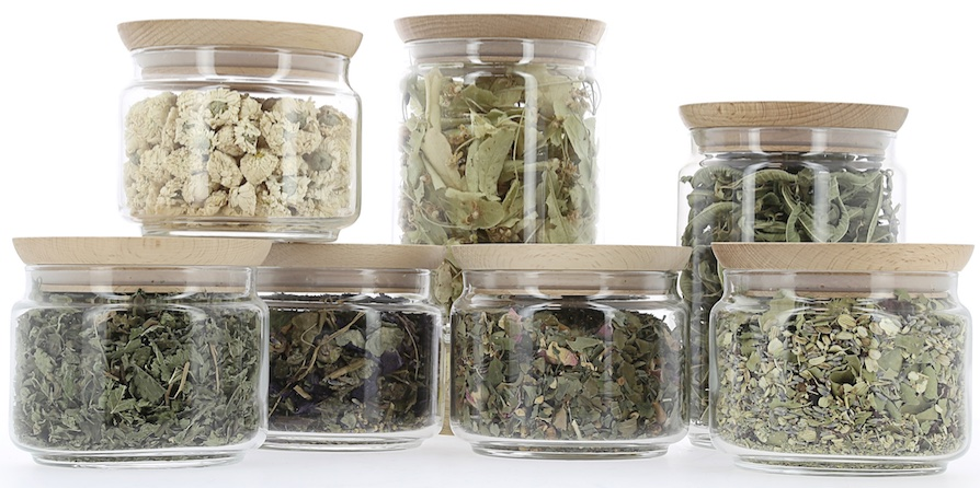 bar-a-tisane-nature-et-decouvertes-la-revue-y-1
